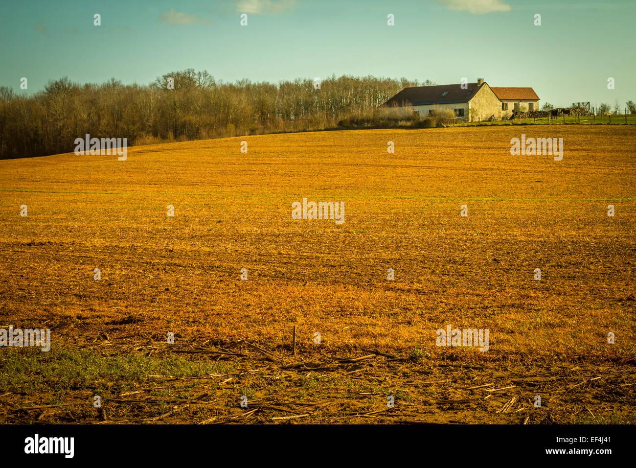 Bauernhaus auf einem Feld. Stockbild