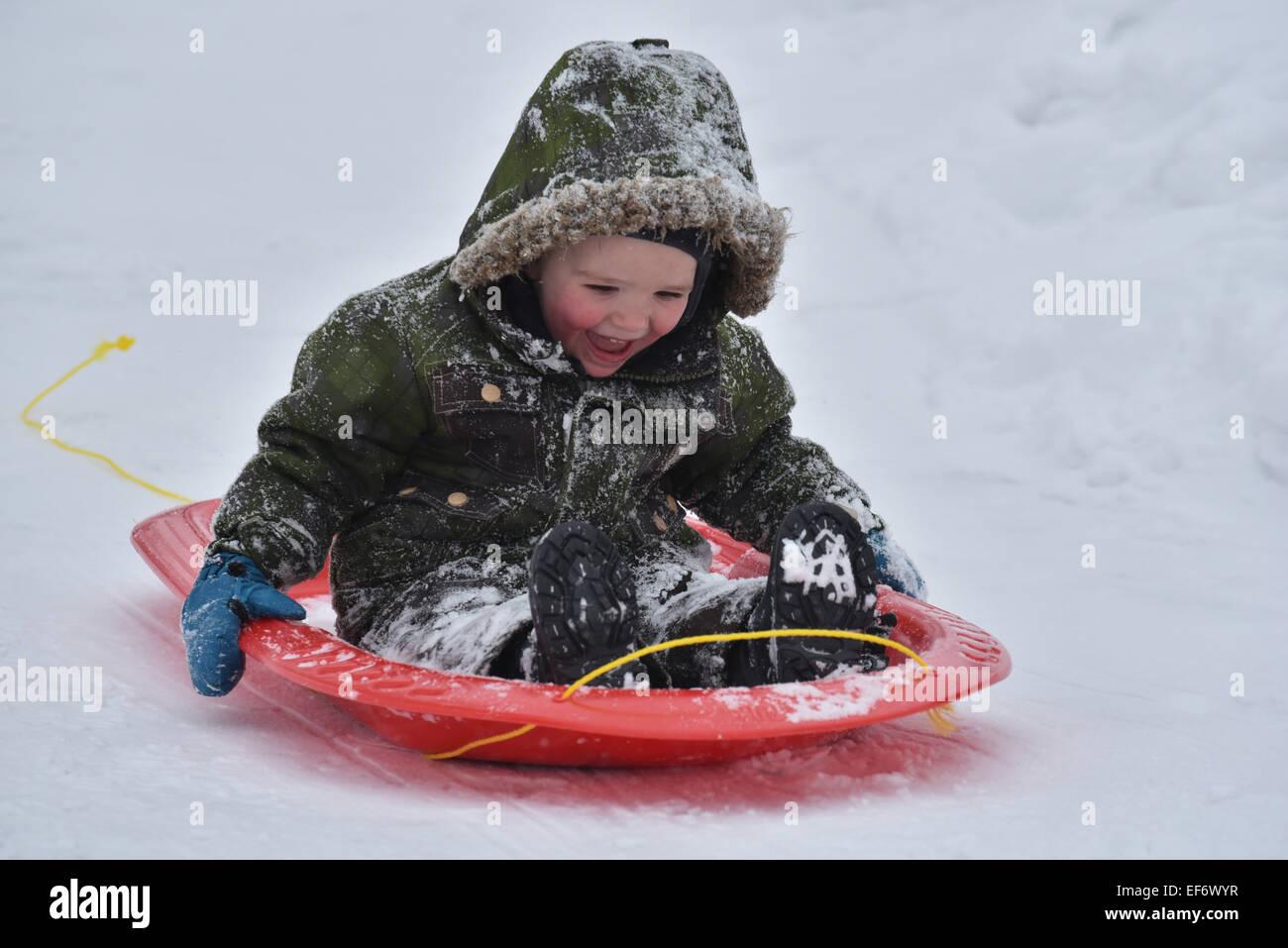 Ein kleiner Junge (2 1/2 Jahre) lachen beim Rodeln Stockbild