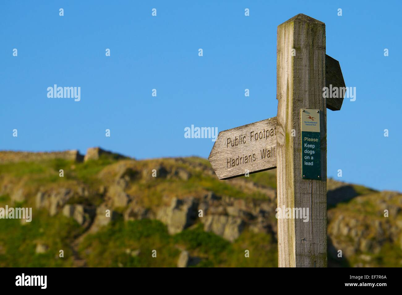 Finger-Wegweiser des öffentlichen Fußweg am Hadrianswall National Trail, Northumberland, England, UK. Stockbild