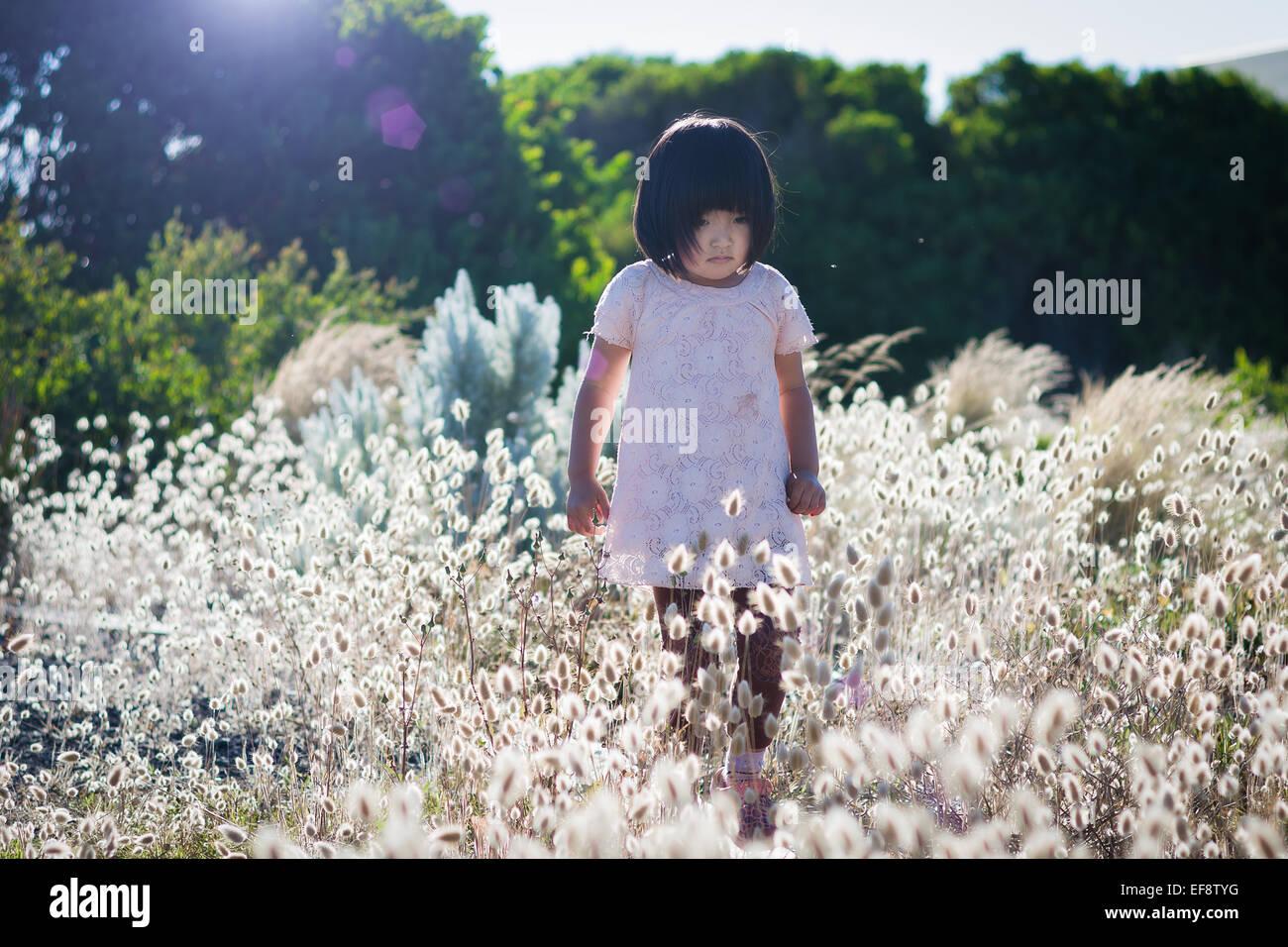 Kleine Mädchen tragen weiße Kleid in Bereichen mit hohen blühenden Gräsern, Bäumen im Hintergrund laufen Stockfoto