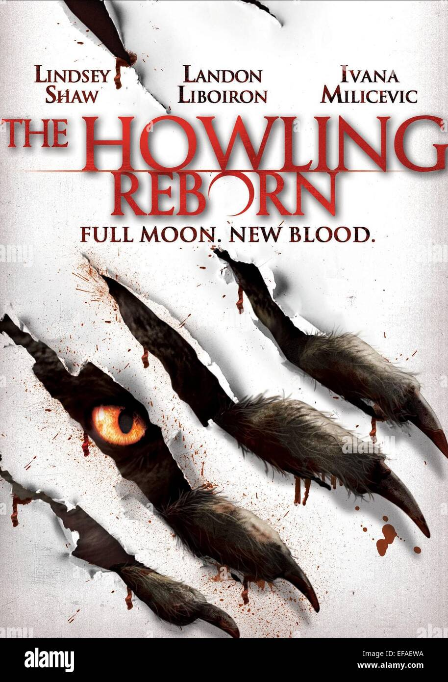 Movie Poster Film Title The Howling Stockfotos & Movie Poster Film ...