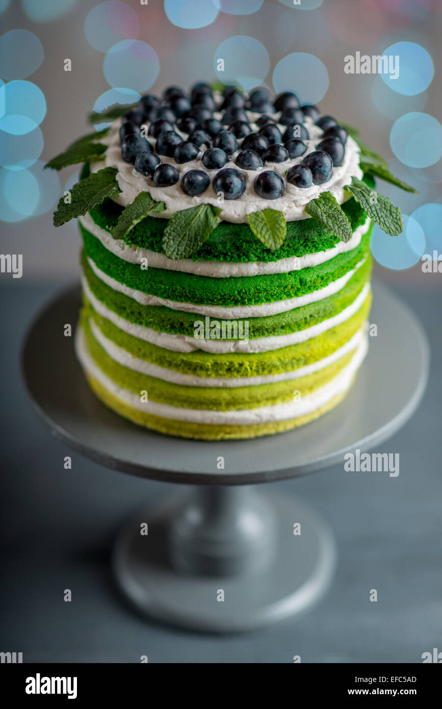 Schön alles Gute zum Geburtstagskuchen mit Mascarpone und Trauben auf dem Kuchen stehen auf festlichen Licht Stockbild