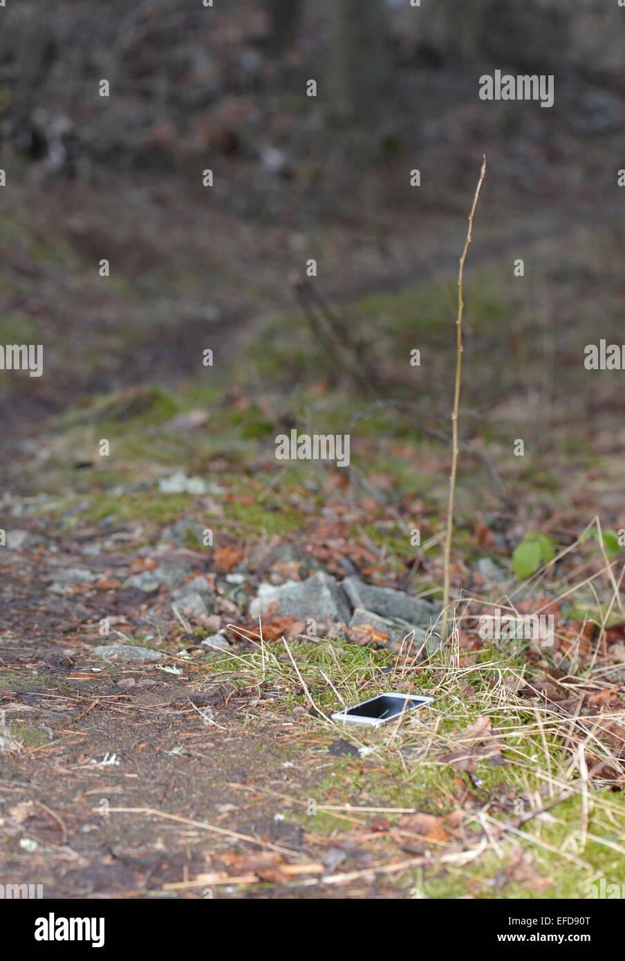Handy verloren am Wanderweg im Wald Stockbild