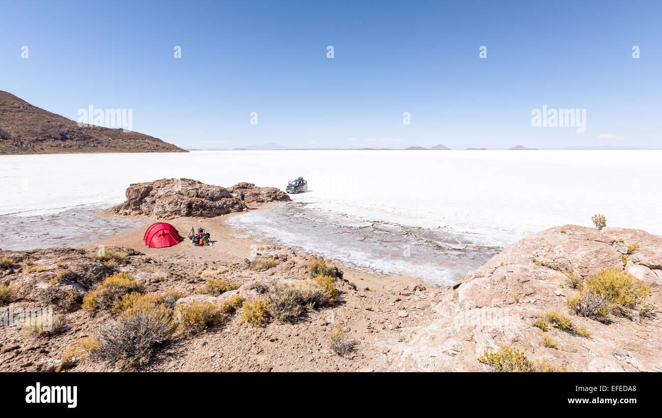 Isla Pescado, Salar de Uyuni Salz flach, Altiplano, Bolivien, Südamerika Stockbild