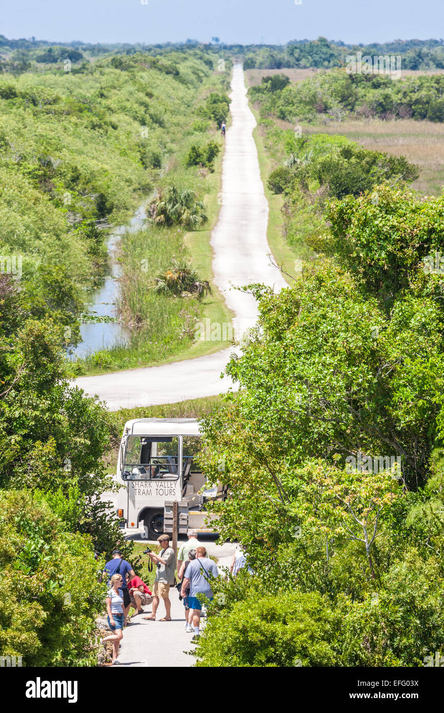 Shark Valley Straßenbahn Rundweg von Shark Valley Besucher Beobachtung Turm Everglades Nationalpark Everglades Stockbild