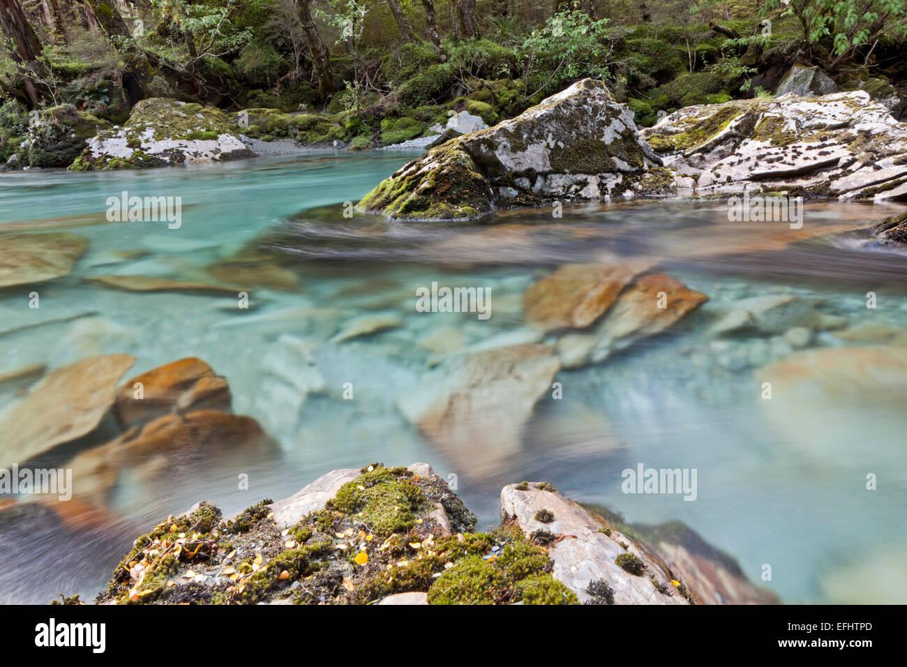 Türkisfarbenes, klares Gebirgswasser entlang der Routeburn Track, ein Great Walk, Südinsel, Neuseeland Stockbild