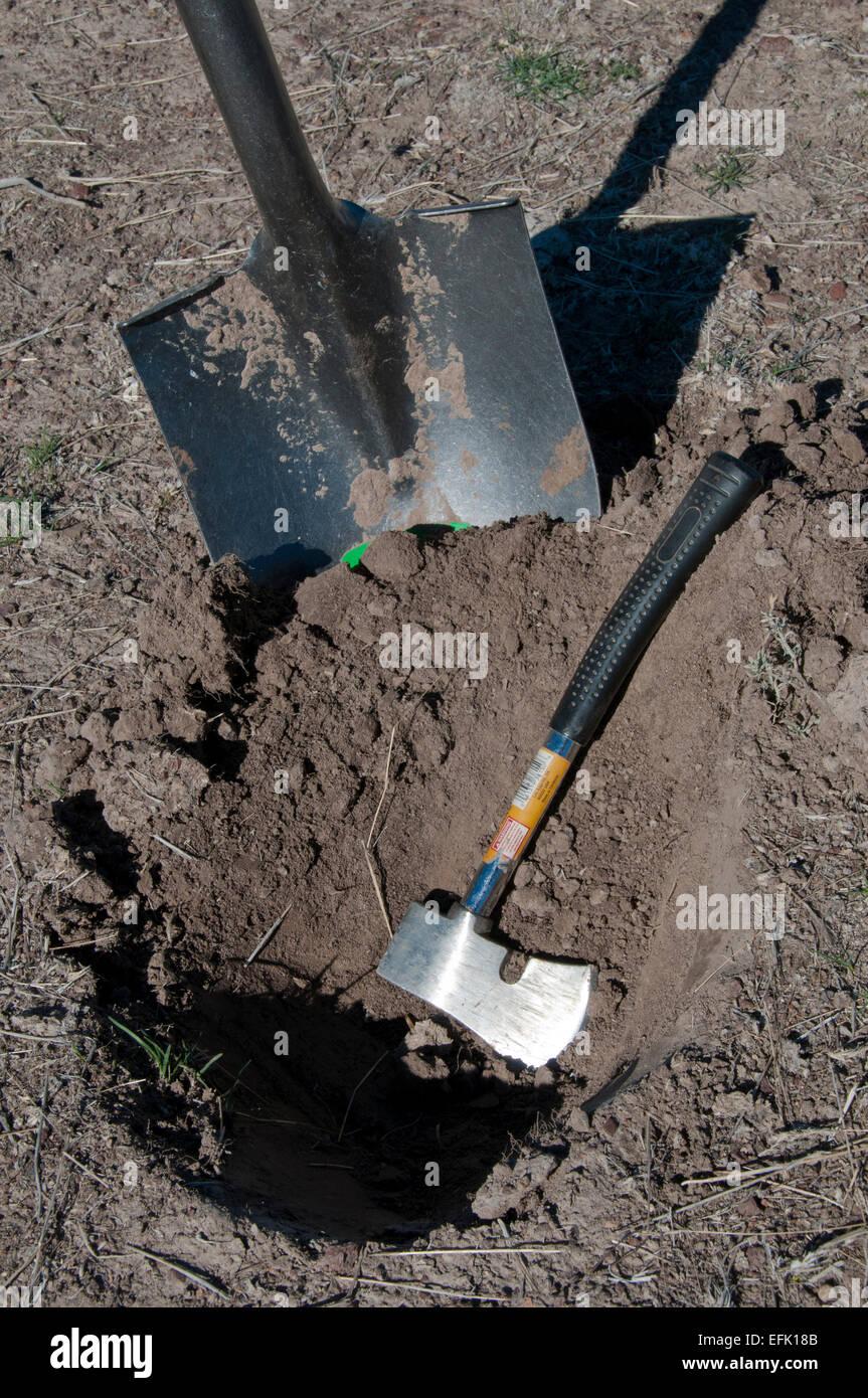 Begraben