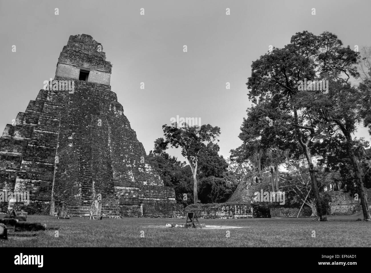 HDR Foto des Tempels 1 In Tikals Central Plaza Stockbild