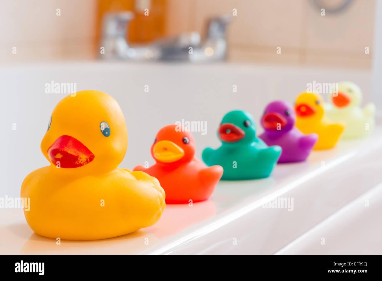 Eine süße Gelbe Gummiente an der Spitze einer Reihe von bunten Plastikenten aufgereiht auf den Rand der Badewanne in einem Badezimmer Stockfoto