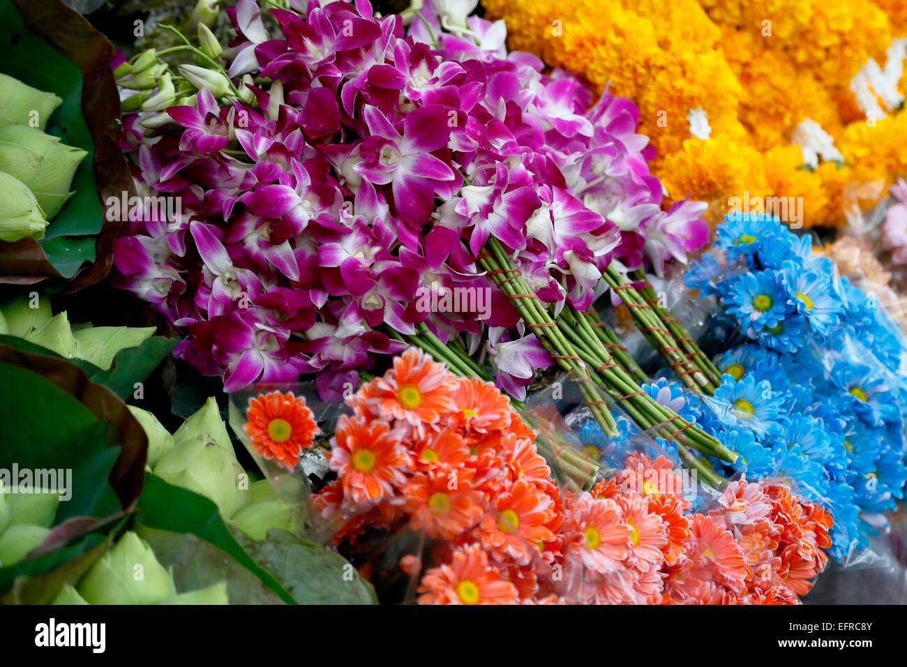 Blumen, Tonne Lamyai Blumenmarkt, Chiang Mai, Thailand Stockbild