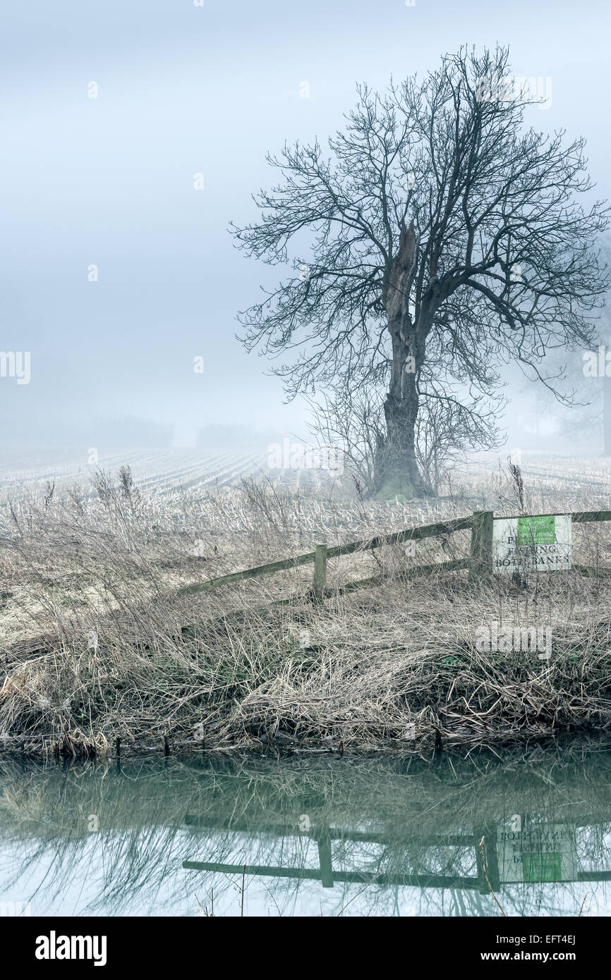 Ein Misty River Avon Stockbild