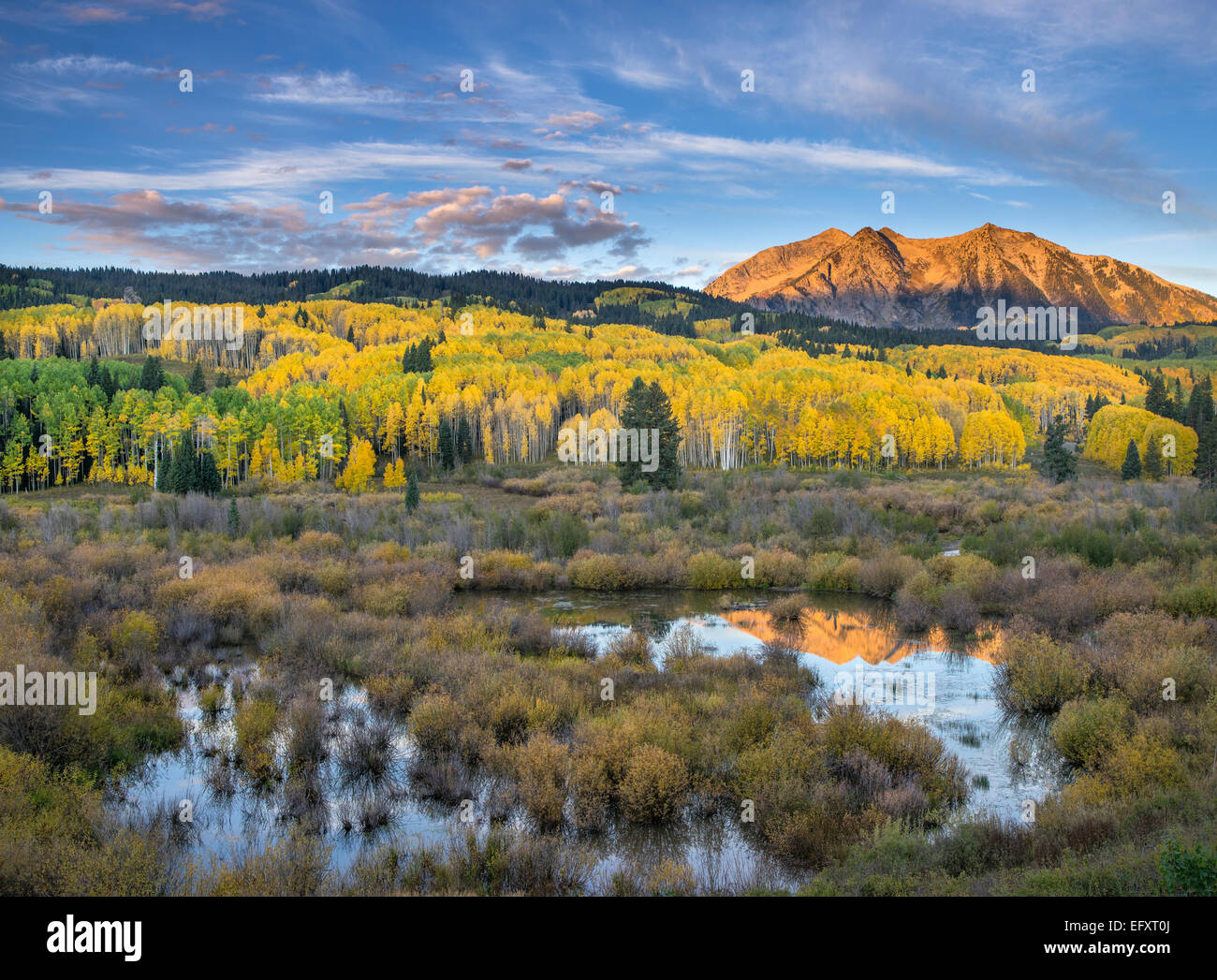 Gunnison National Forest, West Elk Mountains, CO: Sonnenaufgang Licht auf Osten Beckwith Berg, aus einem Biber Teich Stockbild