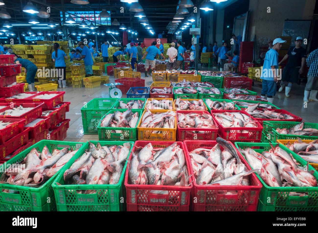 Verschiedene Arten von Frischem Fisch in Plastikkörben Mit Eis, Zentraler Fischmarkt, Saigon, Ho-Chi-Minh-Stadt, Stockbild