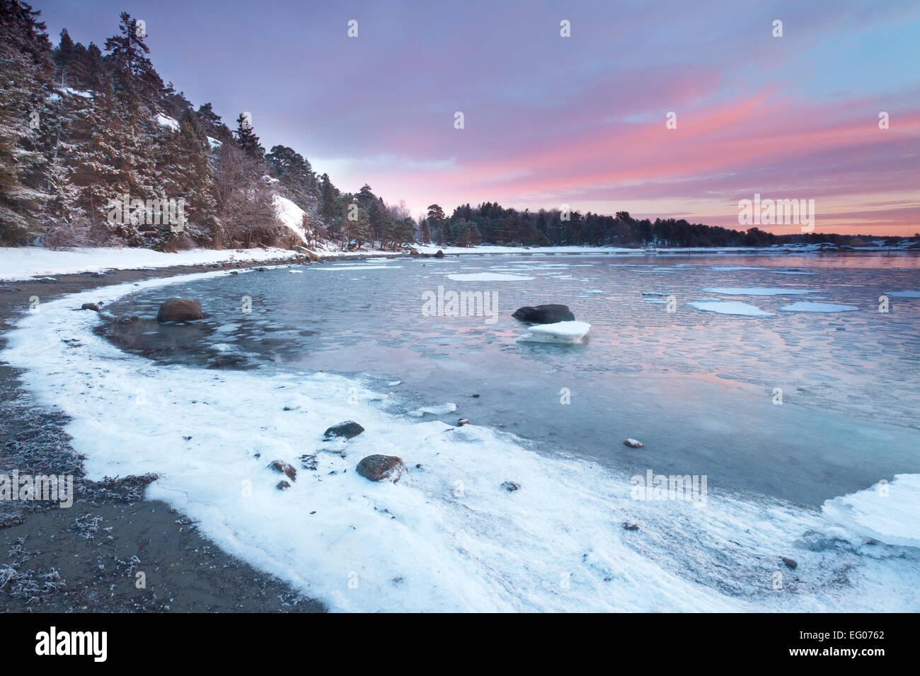 Wintermorgen am Ofen, an der Küste der Oslofjord in Råde Kommune, Østfold Fylke, Norwegen. Stockbild