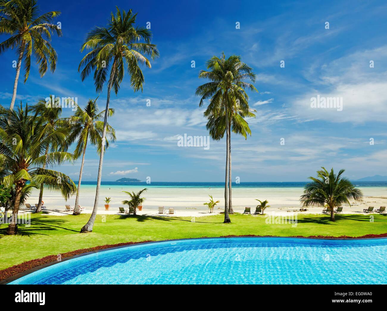 Tropischer Strand mit Palmen und pool Stockbild