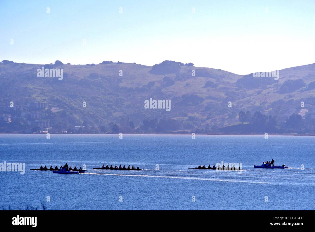 Ruderer, die Ausbildung in einer acht Bucht von San Francisco in Kalifornien Rittersporn Stockbild