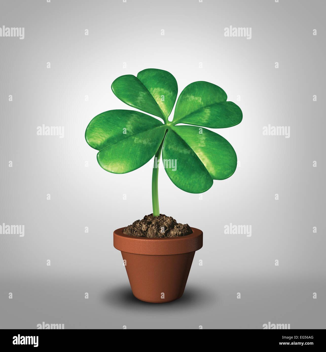 Wächst Ihr Glück als vier-Blatt Klee Pflanze in einen Blumentopf als Symbol für Erfolg und Wohlstand Stockbild