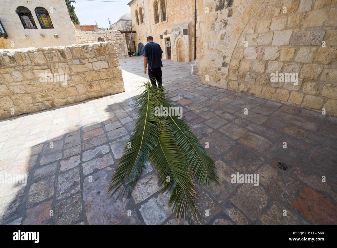 Ein jüdischer Mann zieht mit ihm vorzubereiten für das Laubhüttenfest Palmblätter als Stockbild