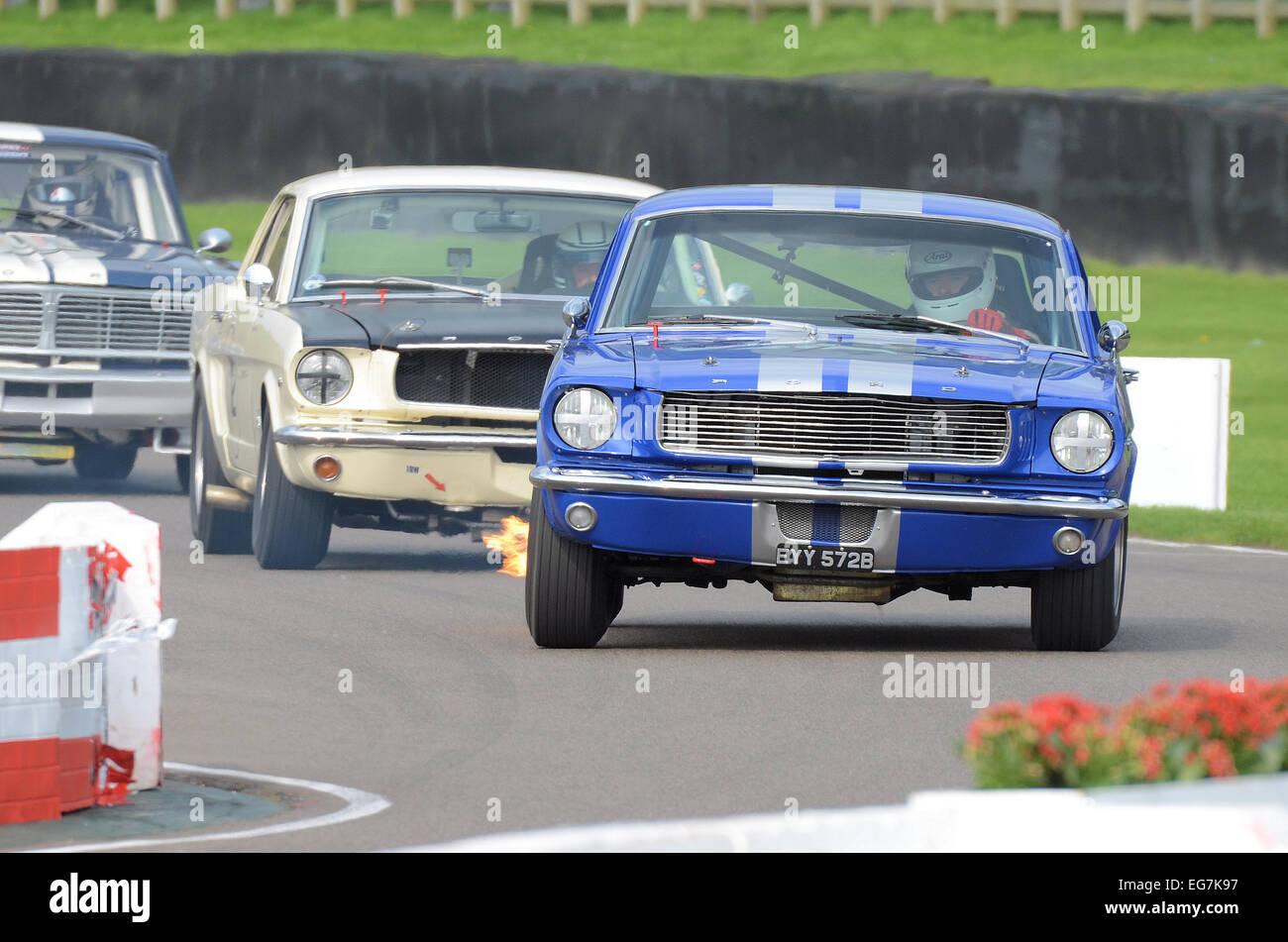 Der Ford Mustang ist eine US-amerikanische Automobil von der Ford Motor Company hergestellt. Beispiele hier Racing Stockbild
