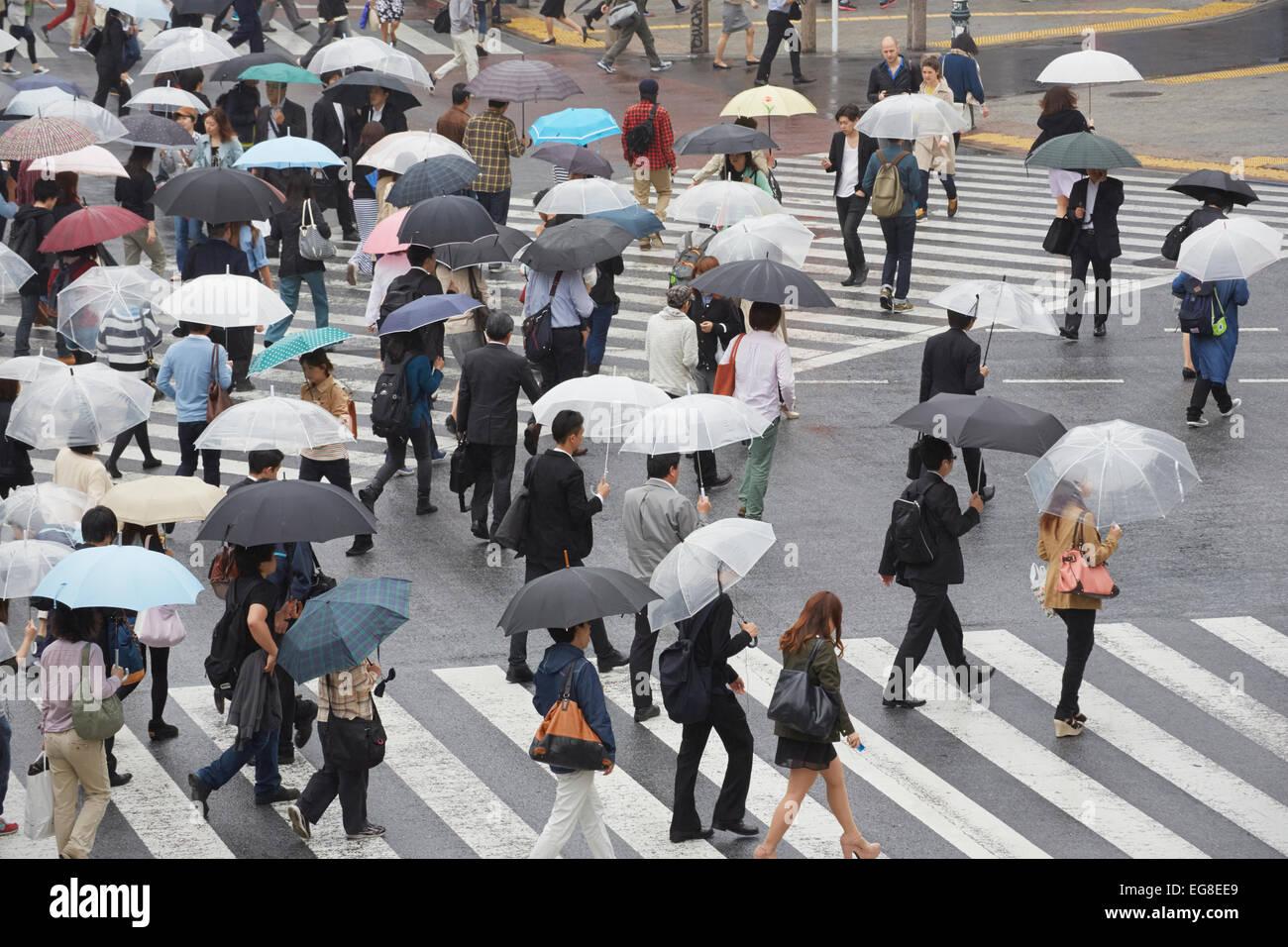 Pendler mit Sonnenschirmen auf Shibuya Klettern, Kreuzung, Shibuya, Tokyo, Japan Stockbild
