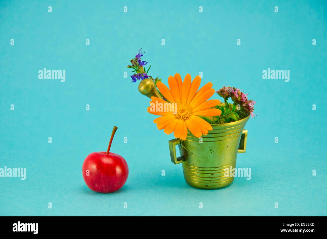 medizinische Blumen, rote Apfel und Vintage Messing Mörser auf blauem Hintergrund Stockbild