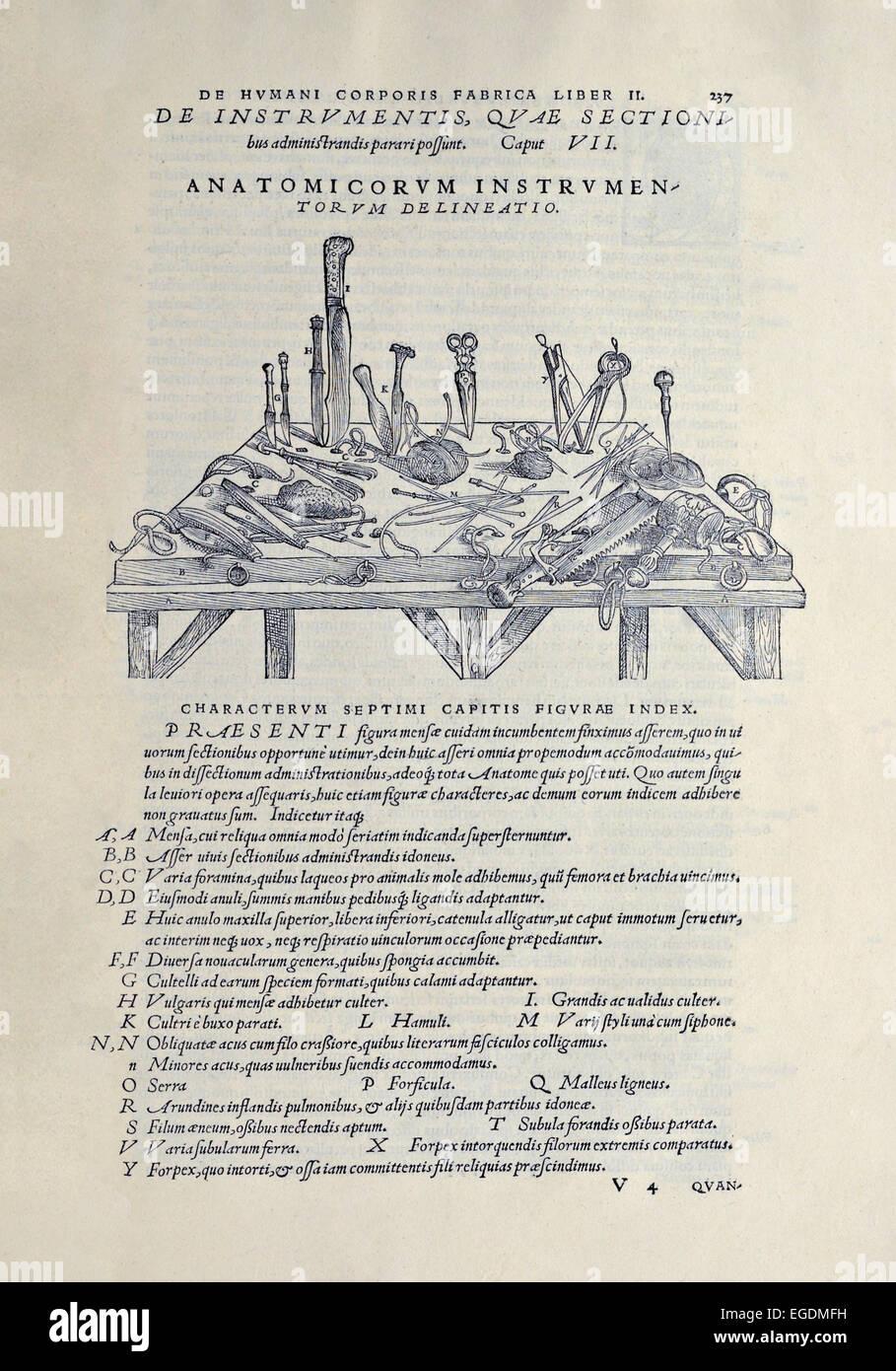 Chirurgische Instrumente in das Sezieren von Leichen zur Anatomie ...
