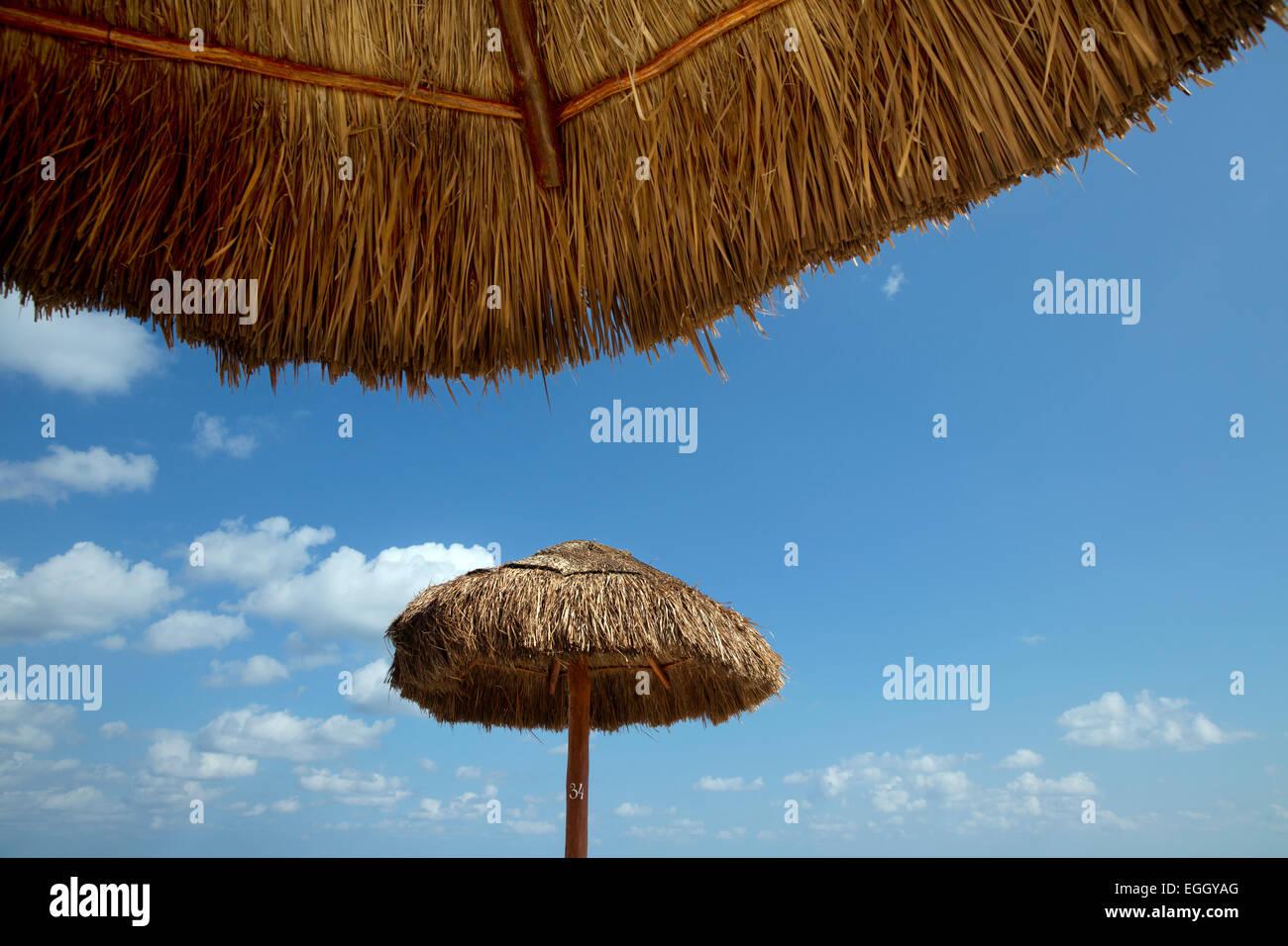 strohgedeckte Sonnenschirme, Cancun, Mexiko Stockbild