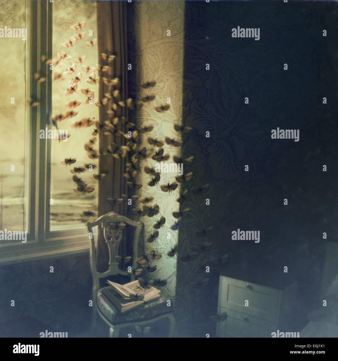 Schmetterlinge fliegen aus geöffneten Buch Stockbild