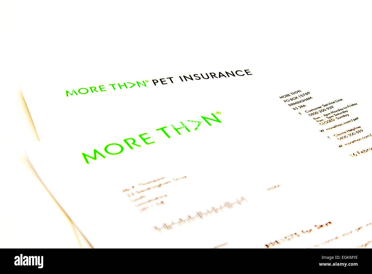Mehr Als Haustier Versicherungsanspruch Form Policy Brief Logo
