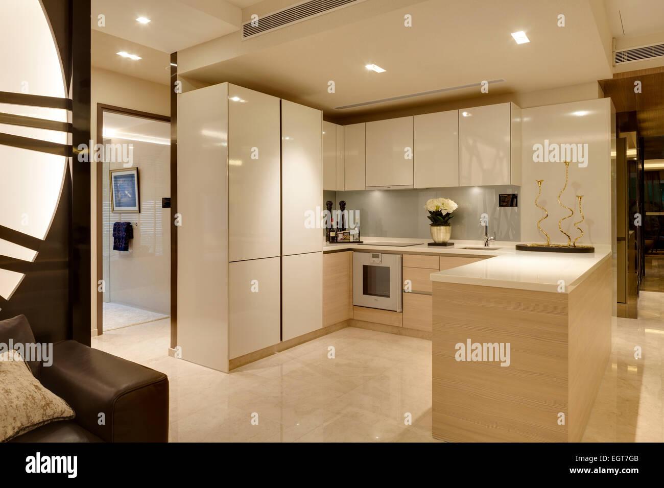 Offene Küche Im Flachen V Auf Anzeigen Shenton Eigentumswohnung Von UN  Studio, Singapur