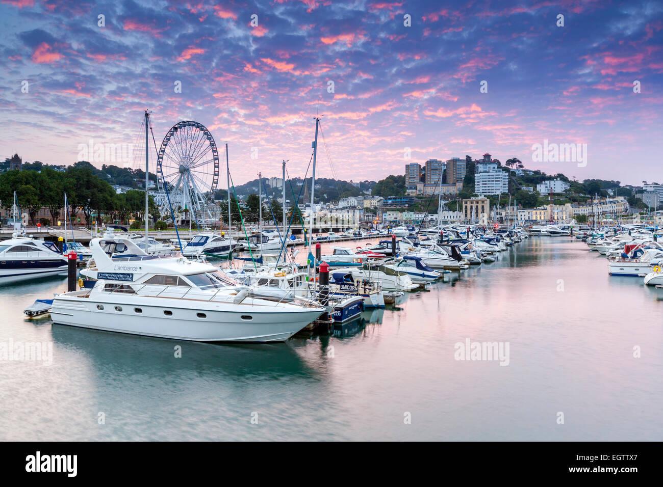 Stadt und Hafen, Torquay, Devon, England, Vereinigtes Königreich, Europa. Stockbild