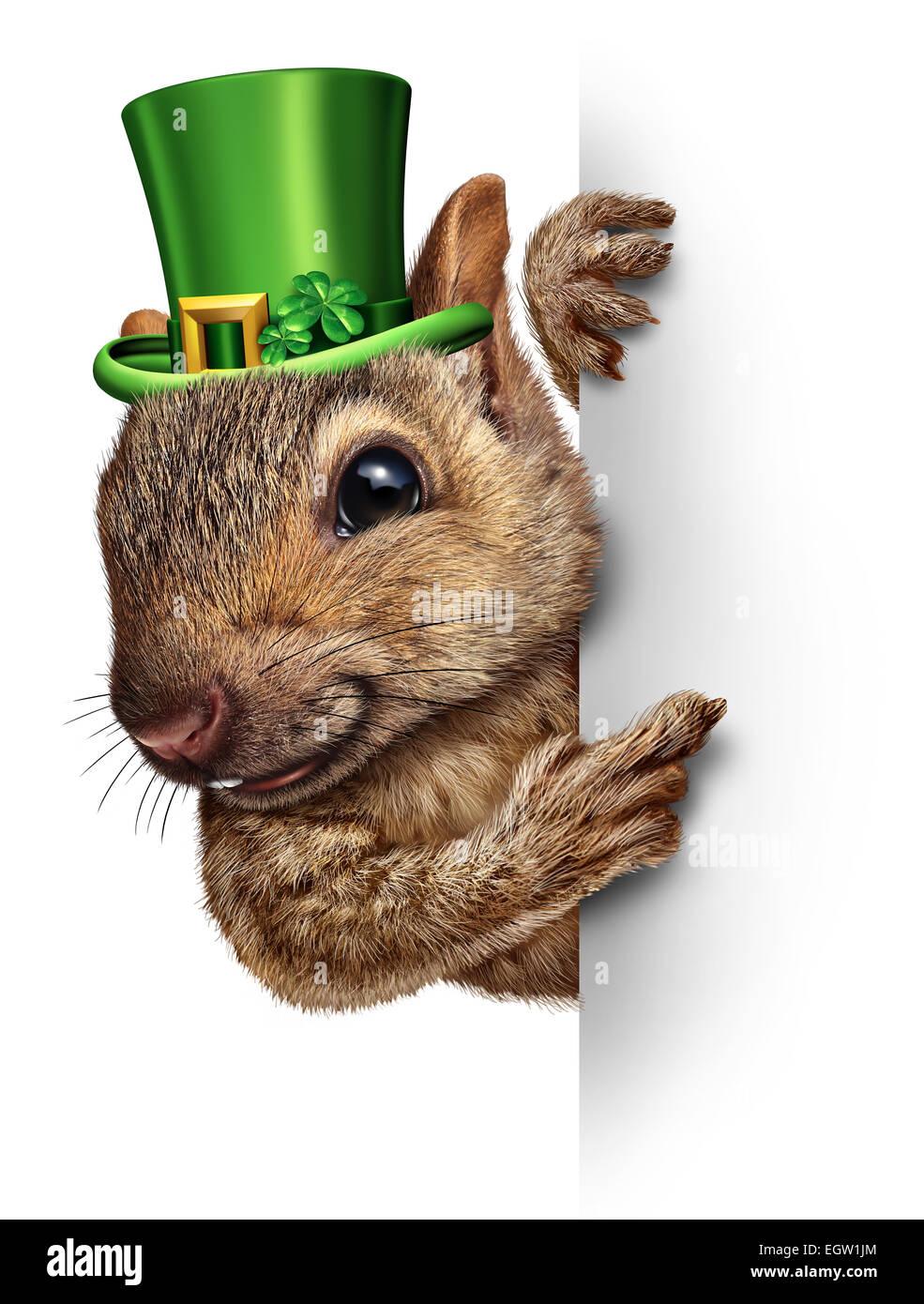 Frühling Eichhörnchen Banner Konzept als niedlich glücklich Tierwelt eine Glück Grün tragen Stockbild