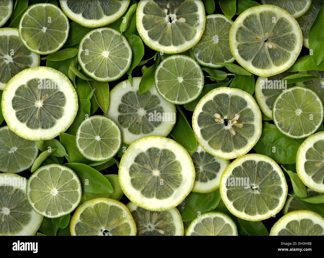 Bunte Scheiben Zitronen und Limetten Stockbild