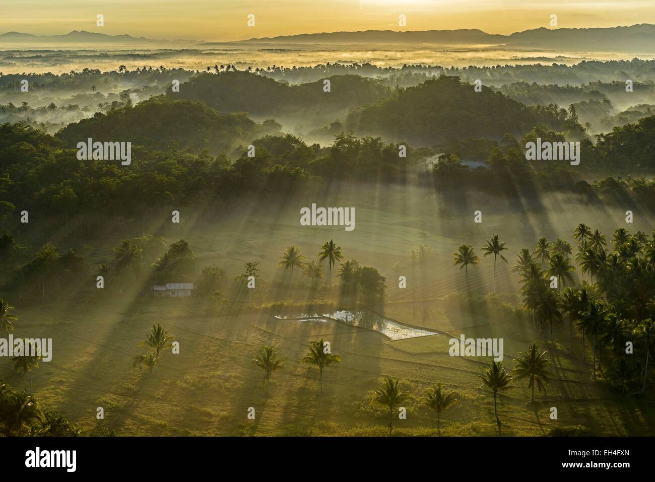 Philippinen, Visayas-Archipel, Bohol Island, Carmen Bereich, Reisfeld in die Chocolate Hills bei Sonnenaufgang Stockbild