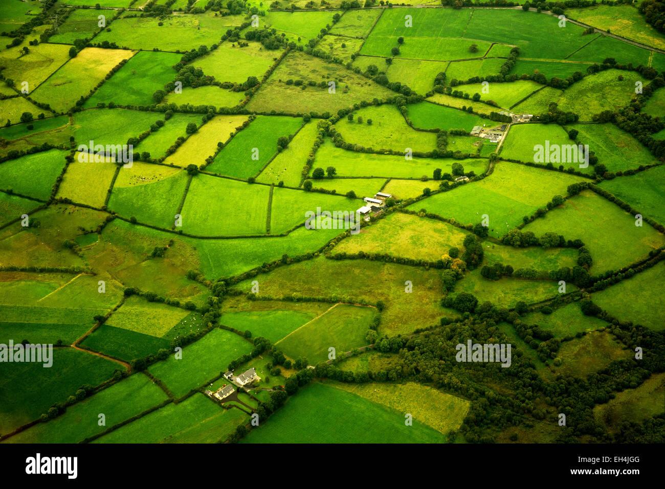 Grüne Weiden, wie aus der Luft gesehen. Irland Stockbild
