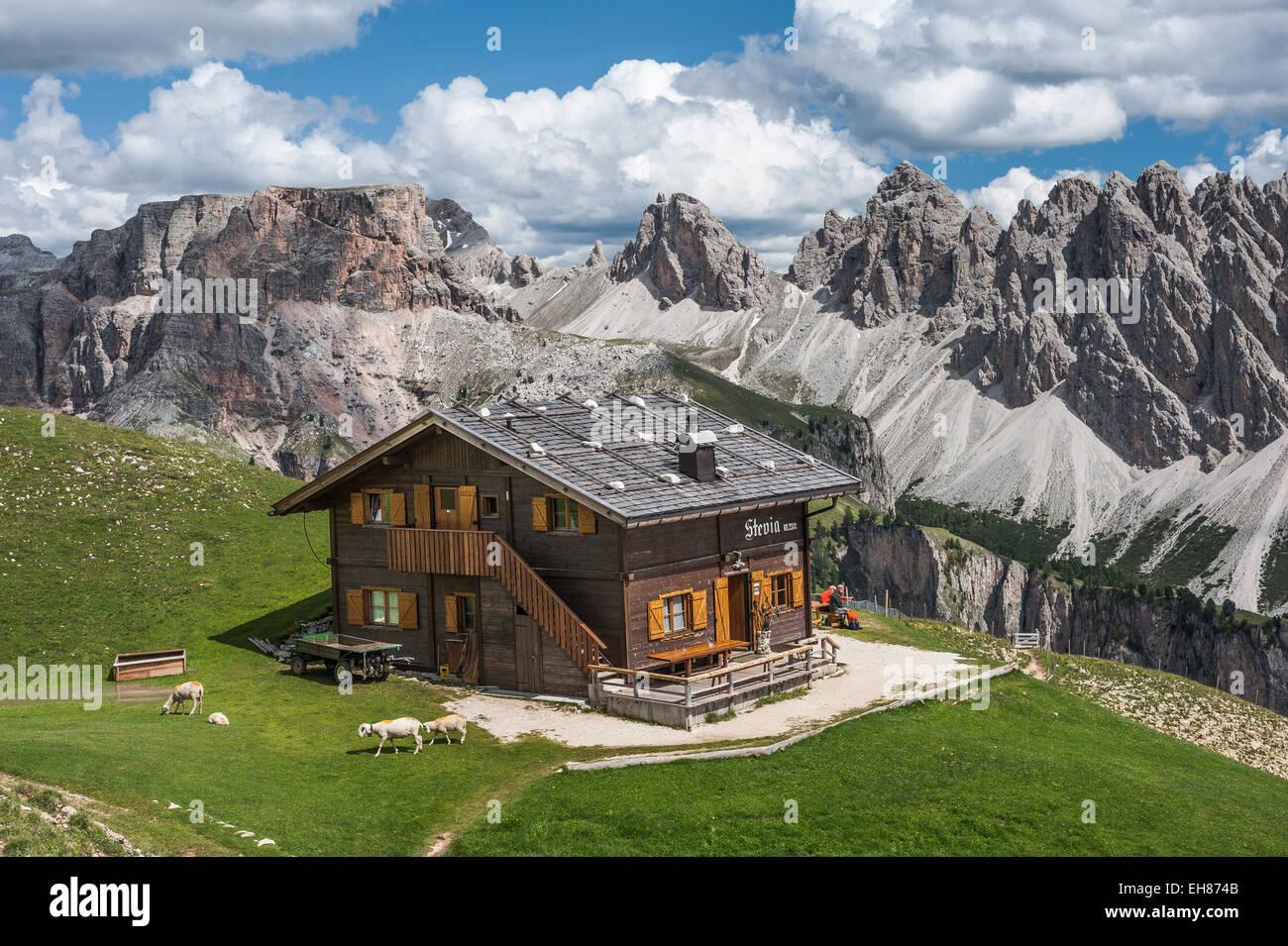 Steviahütte Berggasthaus, 2312m, Stevia-Massivs, Puez-Gruppe, Naturpark Puez-Geisler, Grödner Dolomiten, Stockbild