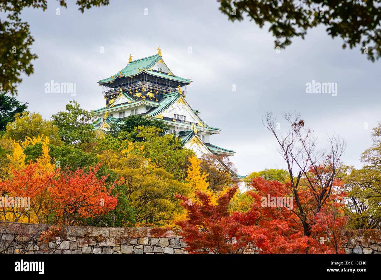 Burg von Osaka in der Herbstsaison. Stockfoto
