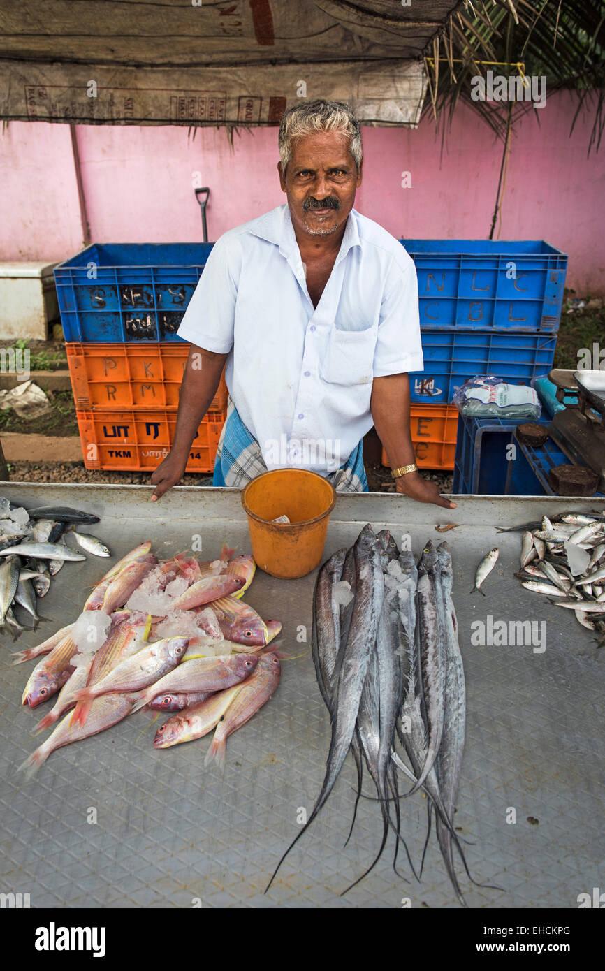 Fischhändler an seinem Marktstand, Alappuzha, Kerala, Indien Stockbild