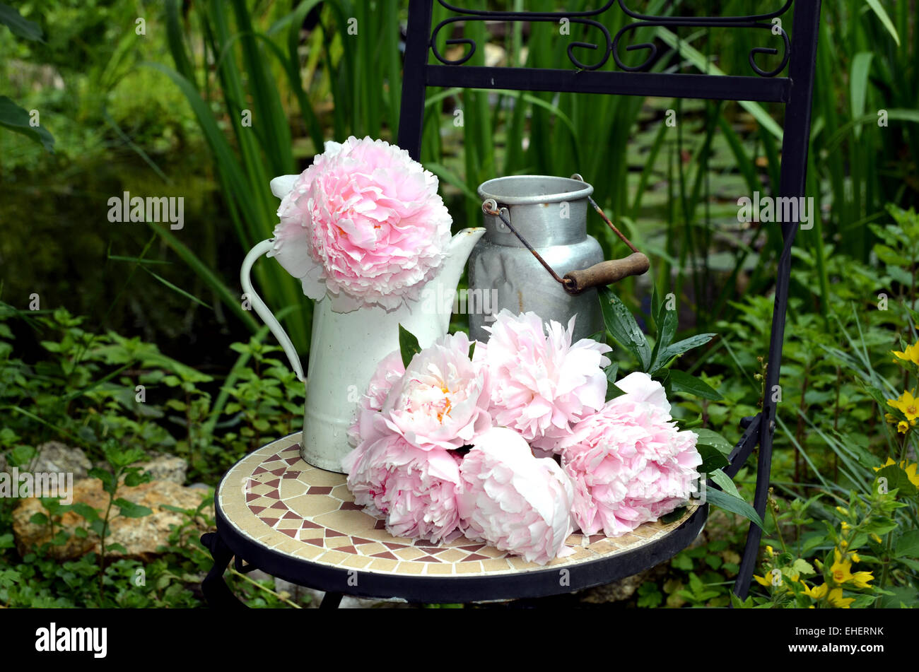 shabby chic blumen garten pfingstrosen stockfoto bild. Black Bedroom Furniture Sets. Home Design Ideas