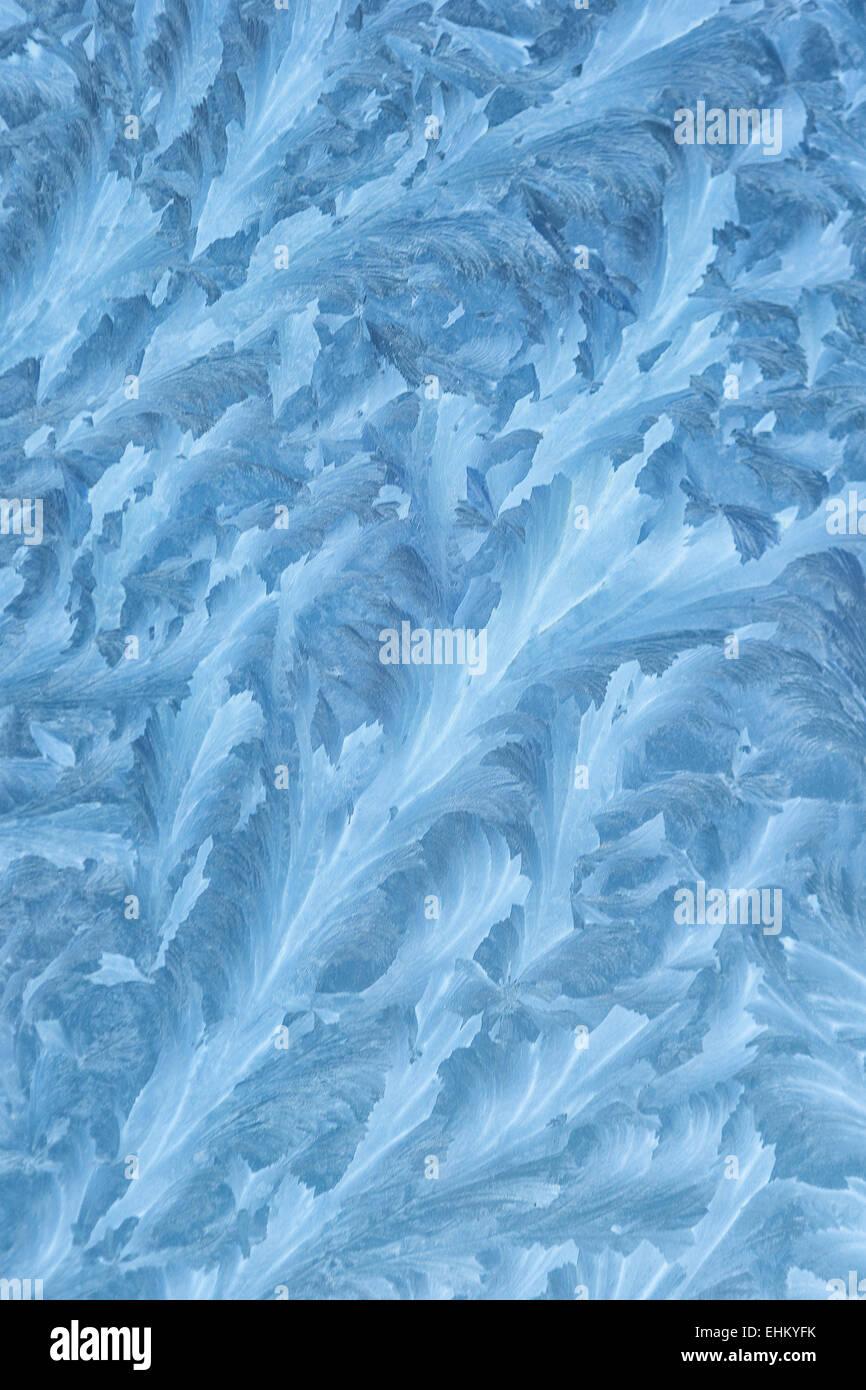 Wintergarten Muster eiskristalle bilden organische muster auf das glas einem