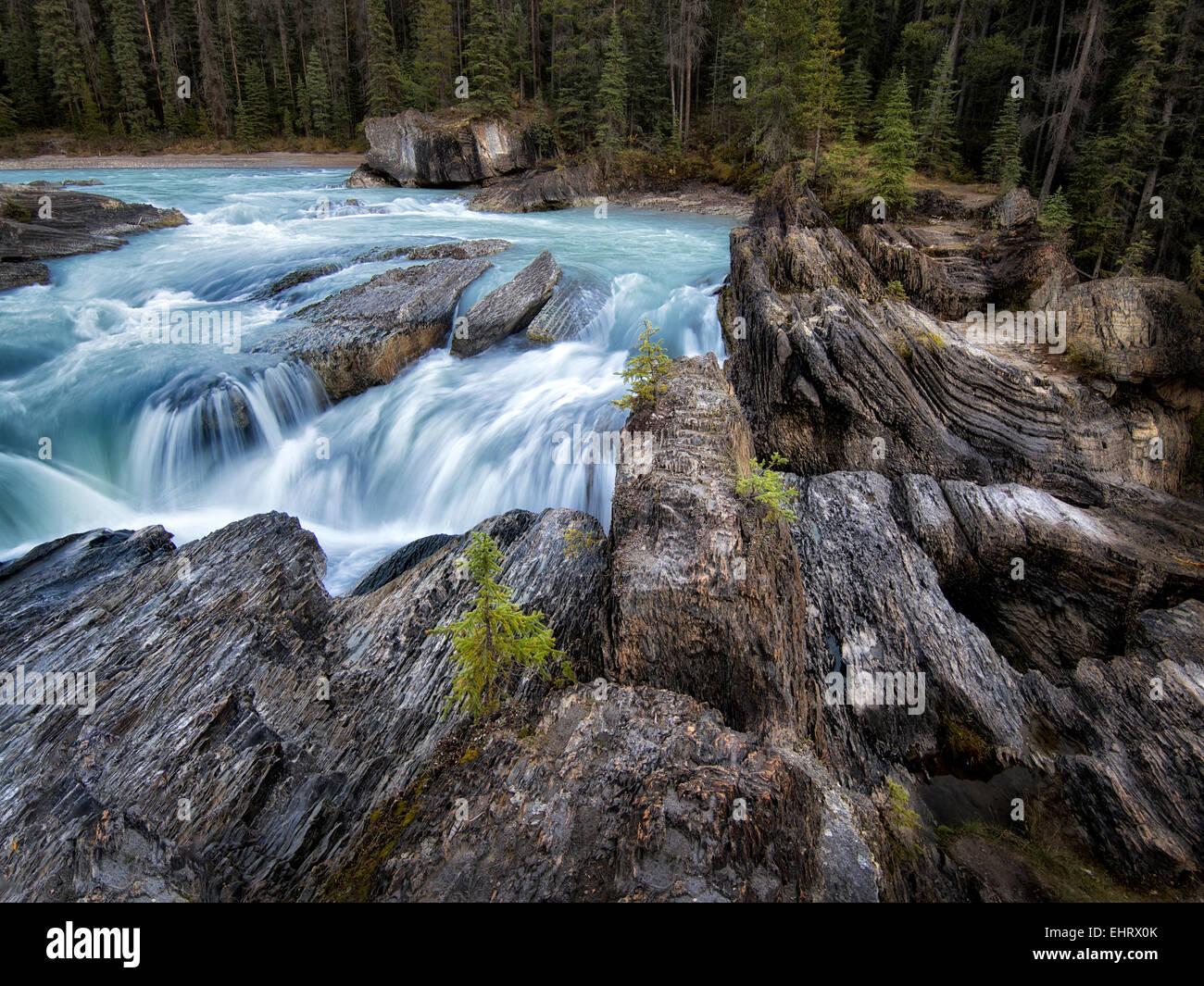 Kicking Horse River und natürlichen Brücke fällt in British Columbia kanadischen Rockies und Yoho Stockbild