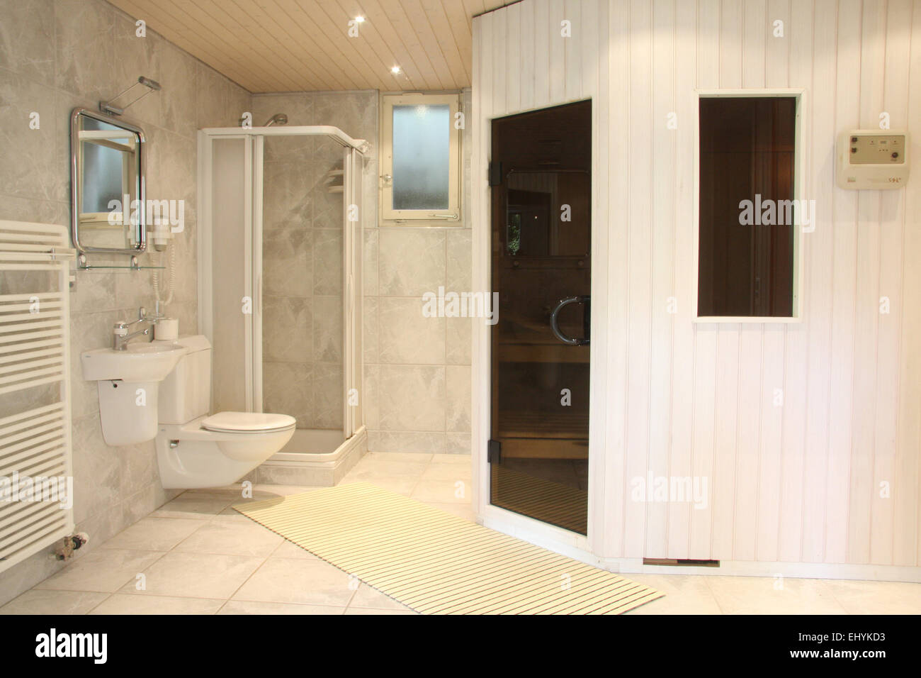 Schweiz, Haus, Wohnung, Einfamilienhaus, luxuriös, innen, WC, Dusche ...