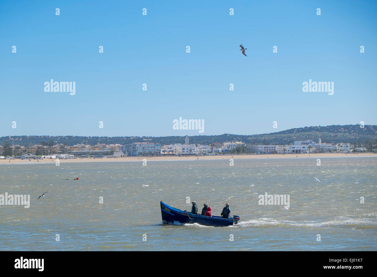 Angelboot/Fischerboot nähert sich des Hafens von Essaouira, Marokko, Nordafrika Stockbild