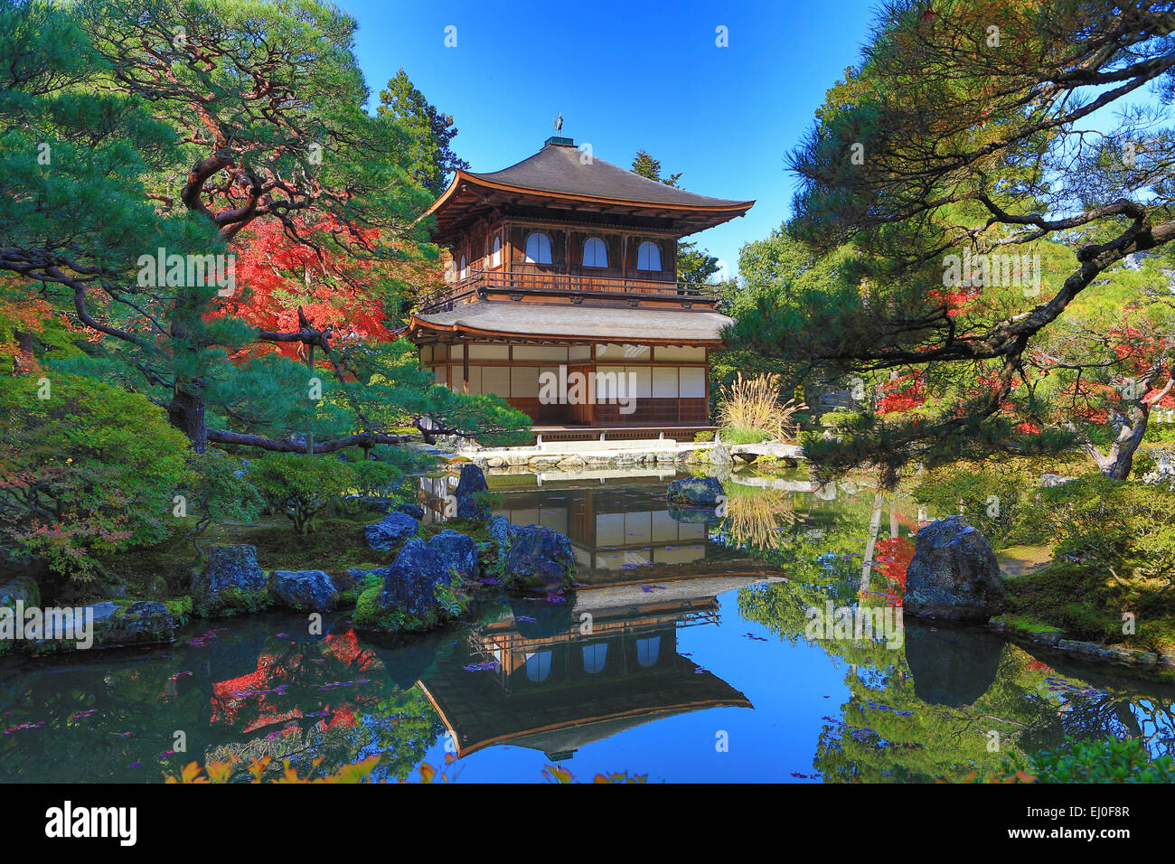 Welterbe, Ginkaku-Ji, Japan, Asien, Kansai, Kyoto, Japan, Landschaft, Architektur, bunt, Herbst, Garten, Haus, Momiji Stockbild