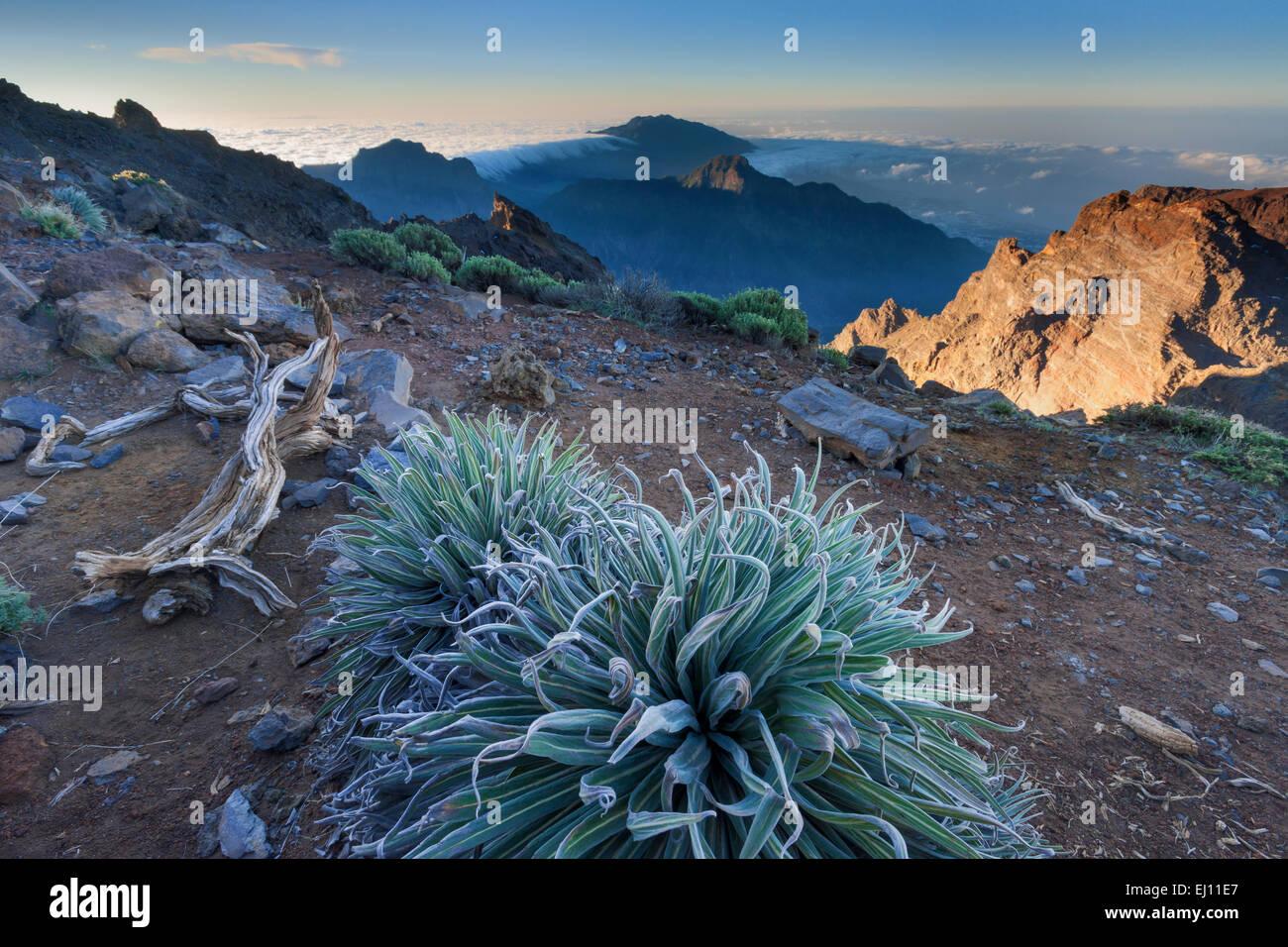 Roque de Los Muchachos, Spanien, Europa, Kanarische Inseln, La Palma, Nationalpark Caldera de Taburiente, Aussichtspunkt, Stockfoto