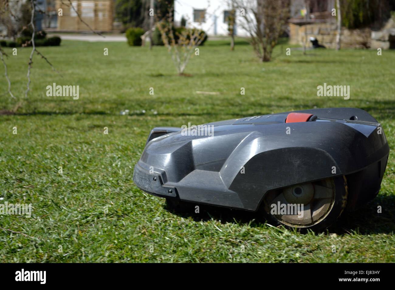 roboter-rasenmäher schneidet rasen stockfoto, bild: 80083751 - alamy