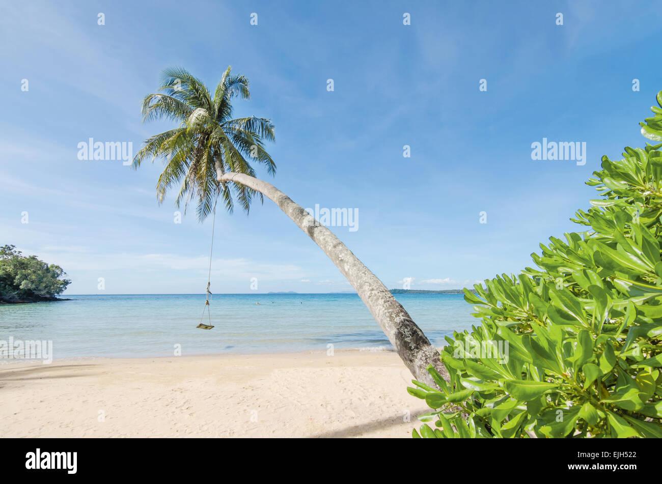 Sommer, Reisen, Urlaub und Ferien-Konzept - Schaukel hängen von Kokosnuss-Palme Strand Meer in Phuket, Thailand. Stockbild