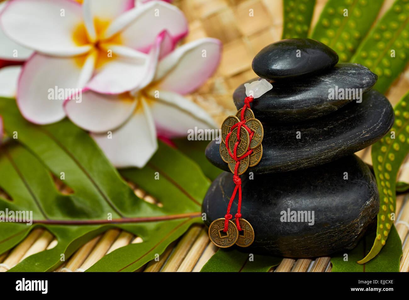 Glatten Schwarzen Felsen Mit Feng Shui Chinesische Münzen Als