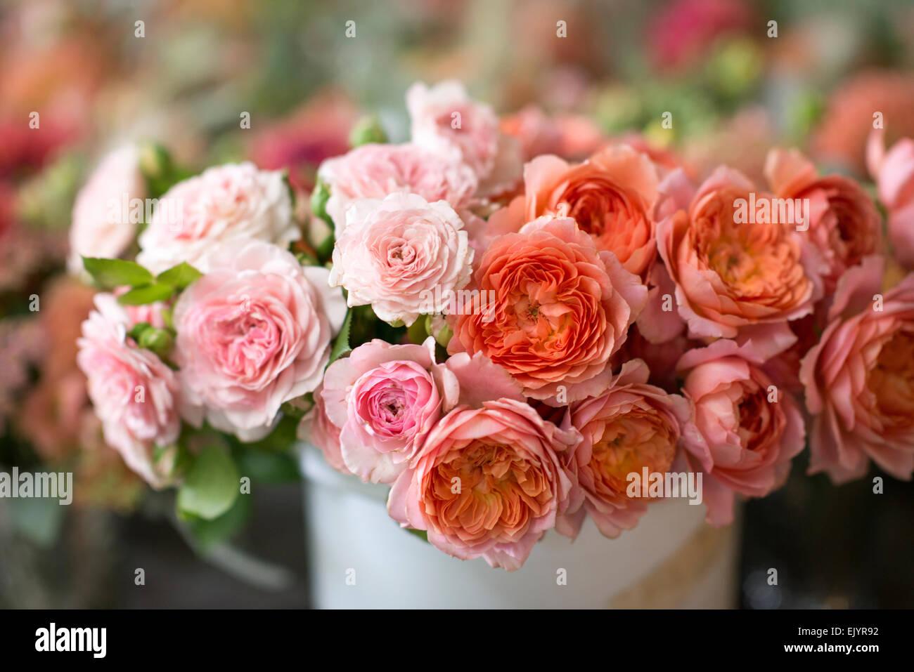 Rosa-Karamel-Antike und Romantik Antike Stockbild