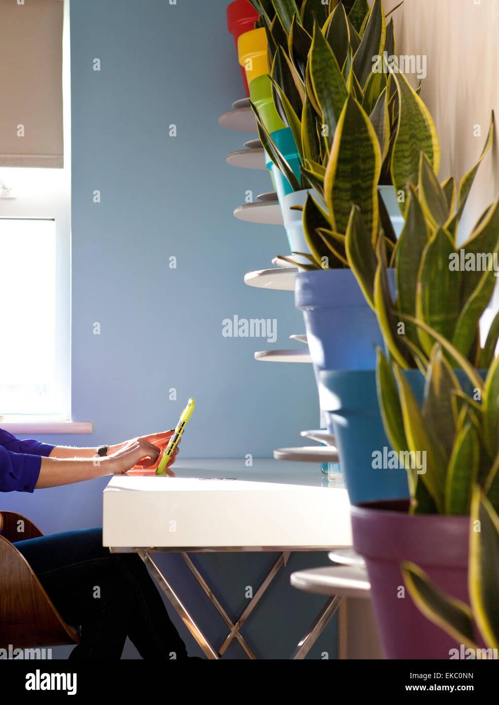 Schuss von Frau mit digital-Tablette vor diagonalen Reihe von Topfpflanzen beschnitten Stockbild